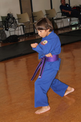 Boy in Blue Demonstrating Karate Move