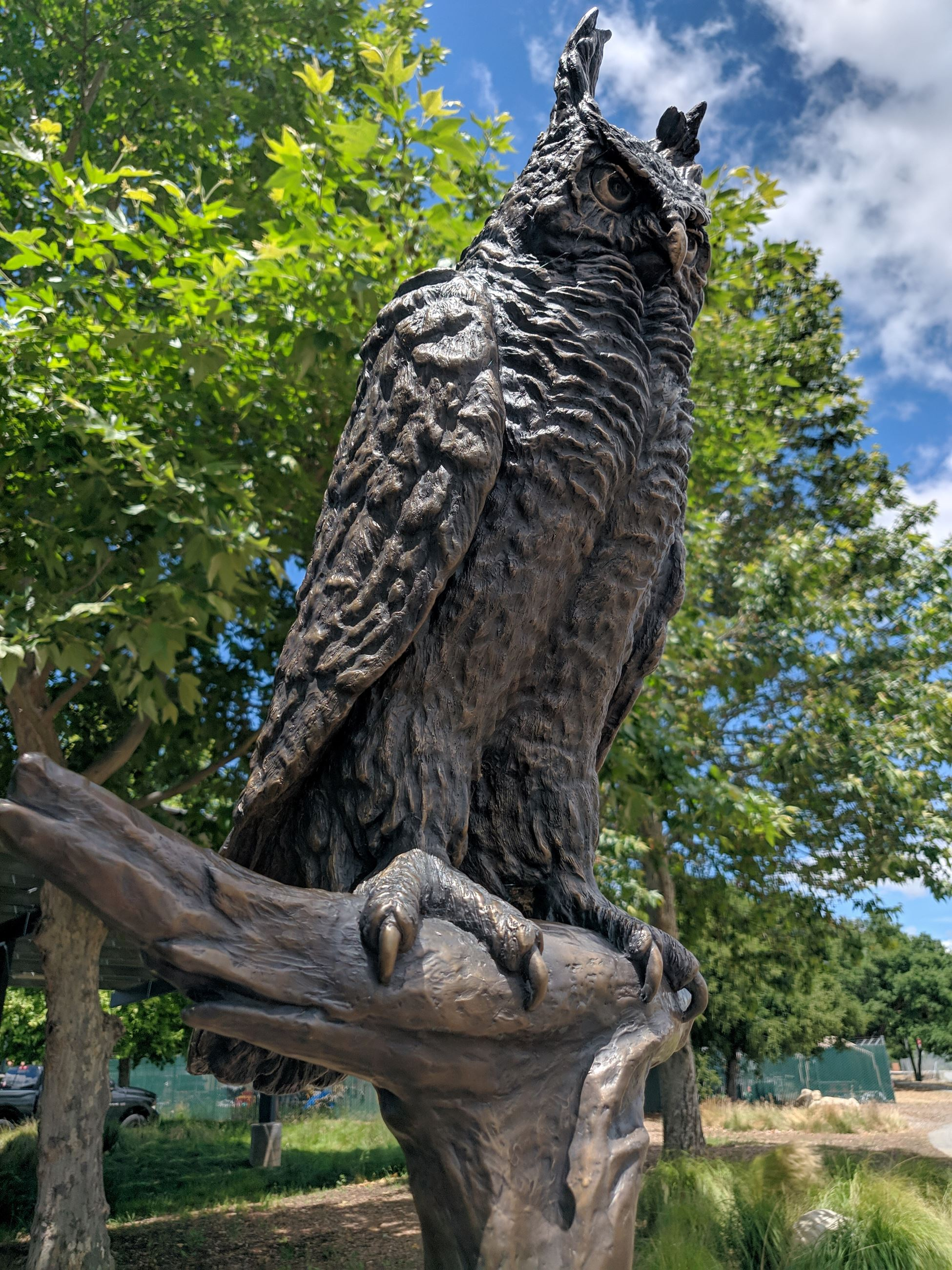 Loki the Owl Bronze Sculpture by Evelyn Davis at Centennial Recreation Center